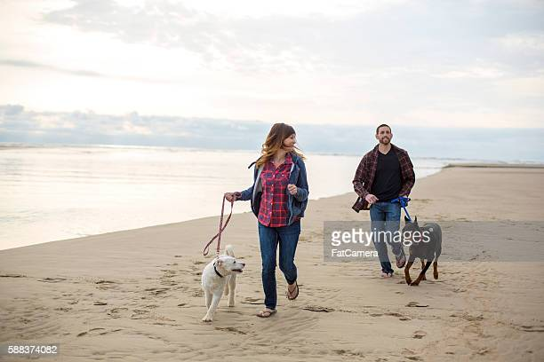 Beautiful couple running with their dogs on the beach