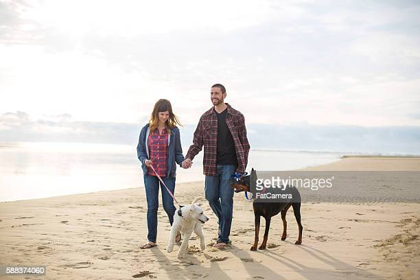 Beautiful couple walking dogs on the beach holding hands