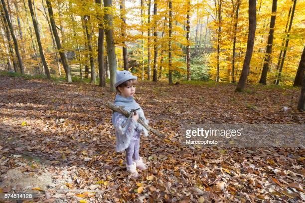 Schöne süße kleine Kind Mädchen mit Zöpfen tragen Strickpullover Hut und Poncho hält einige trockene Äste in ihren Armen im herbstlichen Wald