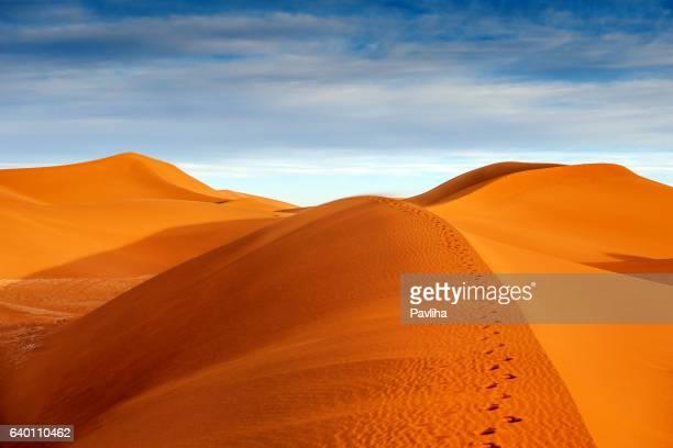 Belles Dunes près de Mhamid, Zagora, Maroc, l'Afrique du Nord