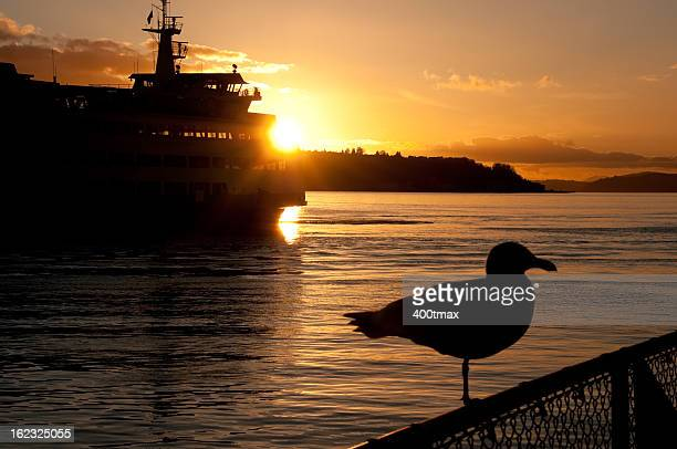 Beautiful Elliot Bay Sunset