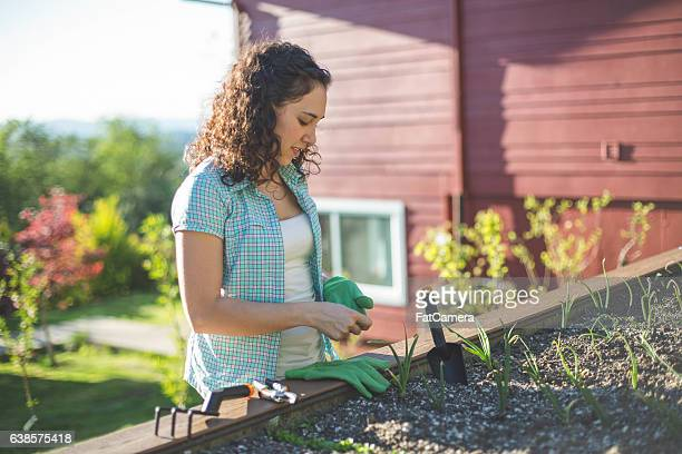 Beautiful ethnic female gardner gardening outdoors
