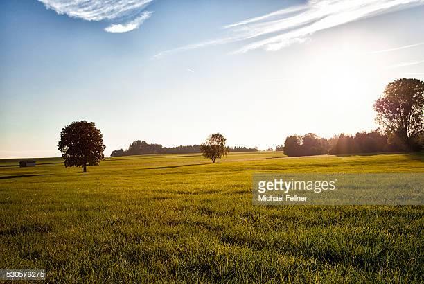 Beautiful evening landscape in Bavaria