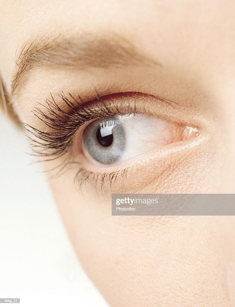 beautiful eyelashes : Stock Photo
