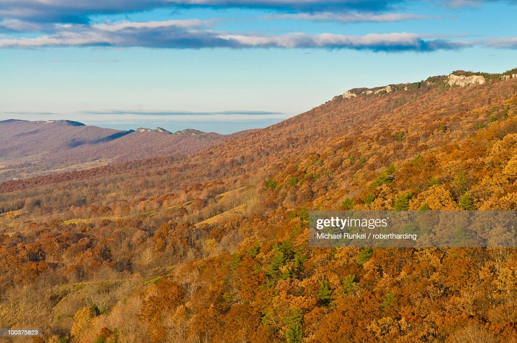 Beautiful Foliage In The Indian Summer Allegheny Mountains West - Mountains in the united states