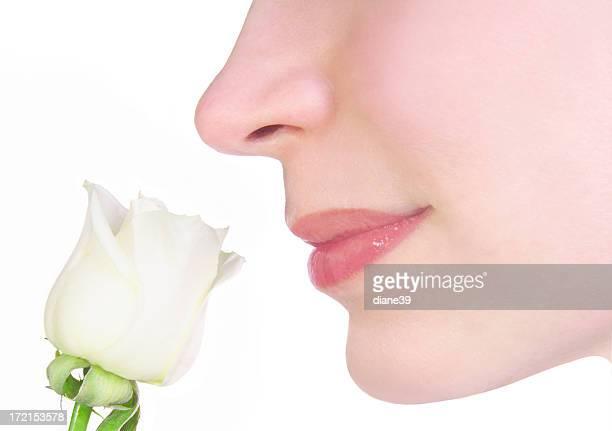 beautiful fragrance