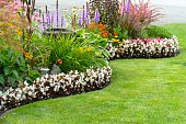 A beautiful and colorful garden featuring perennials and annuals.