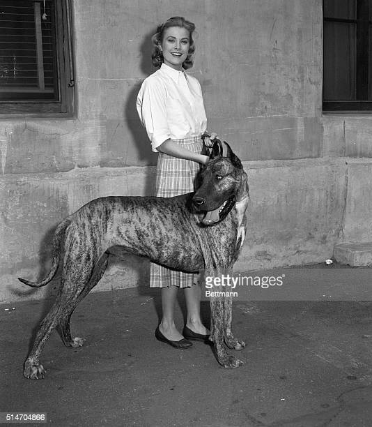Beautiful Grace Kelly who has become one of filmland's queens in just a few years goes for a stroll with her Great Dane on the studio lot between...