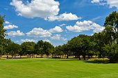 Golf fairway and green lined with trees with a beautiful blue sky above.