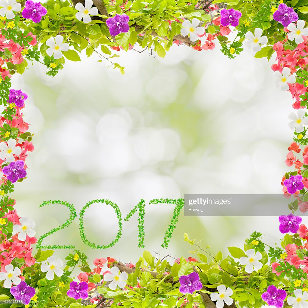 Beautiful green leaves frame with flower and 2017 year : Foto de stock