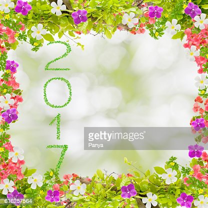 Beautiful green leaves frame with flower and 2017 year : Stock Photo