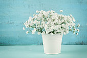 Beautiful gypsophilla flower in white vase on turquoise vintage table.