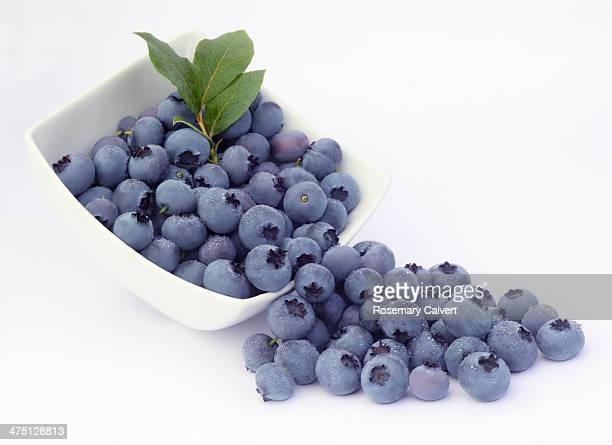Beautiful, healthy blueberries ready to eat