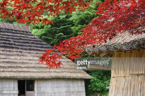 Beautiful house Hokkaido : Stock Photo