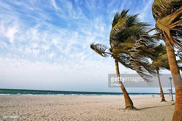 Beautiful Jumeirah Beach, Dubai