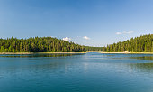 Beautiful lake with islands covered by thick conuferous forests. Mountain lake at Durmitor park, Montenegro
