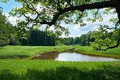 Beautiful landscape in Pavlovsk park. Saint Petersburg
