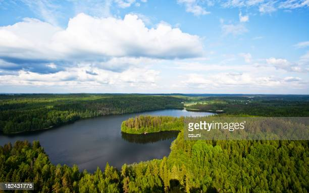 A beautiful landscape of a large forest and a shimmery lake