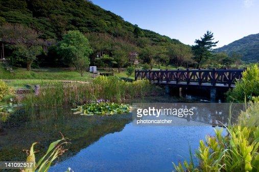 Wunderschöne Landschaft : Stock-Foto