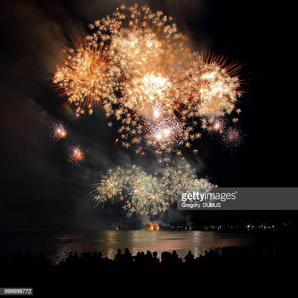 Beautiful large gold fireworks sparks with unrecognizable crowd people watching