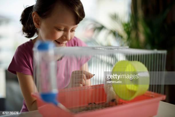 Beautiful little girl is feeding hamster