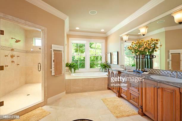 Magnifique salle de bains principale