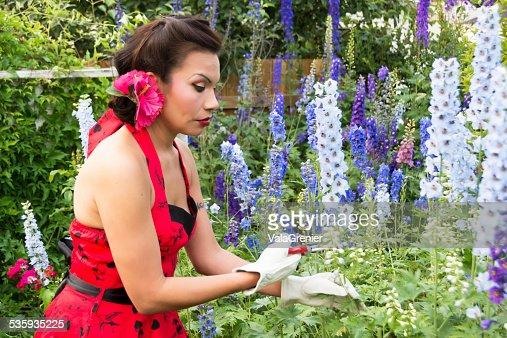 Beautiful mid adult Native woman cutting delphiniums. : Stock Photo