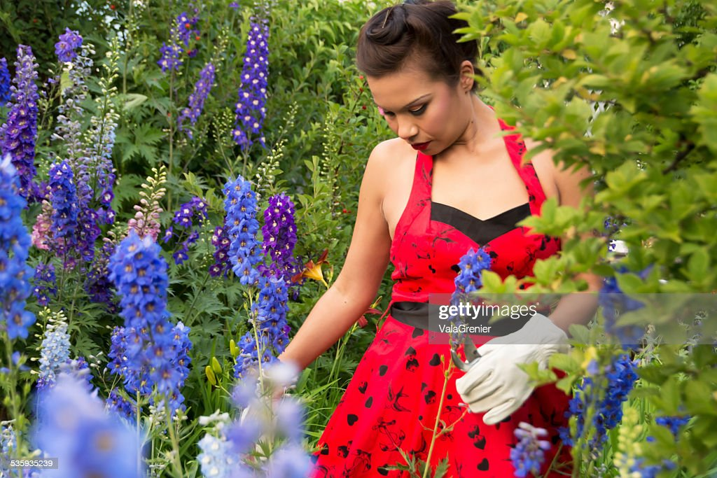 Beautiful mid adult Native woman in garden with delphiniums. : Stock Photo