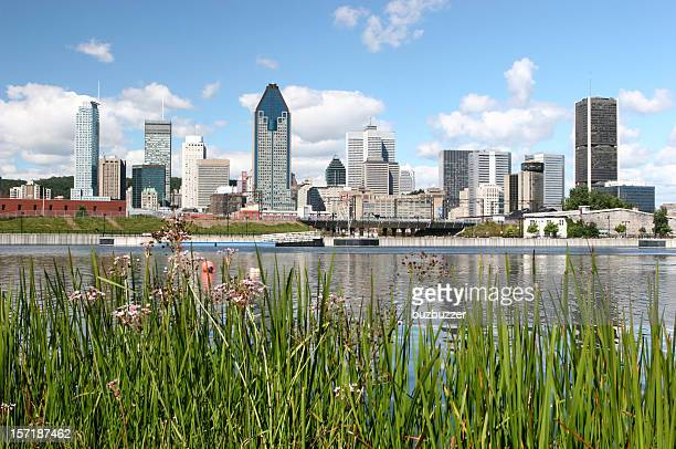 Beautiful Montreal City in Summer