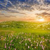 beautiful mountain prairie at the sunset