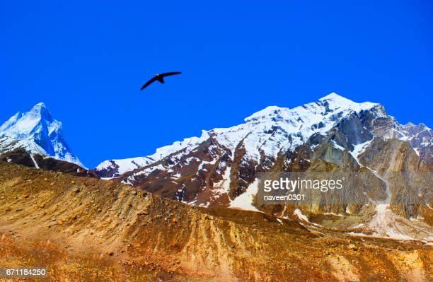 Beautiful Mountains in Himalaya