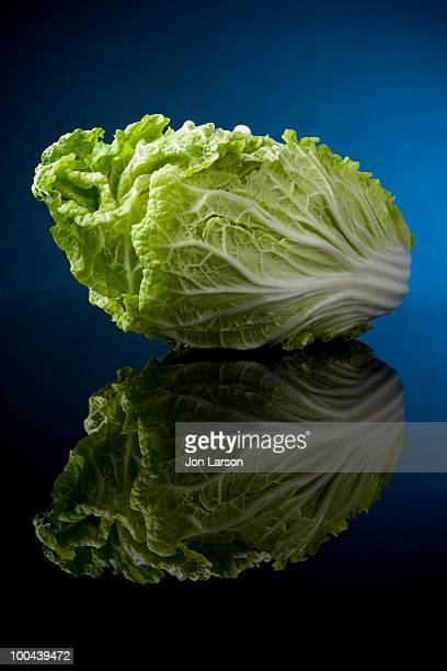 Beautiful Napa Cabbage on Black Glass