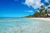 Beautiful natural beach with palm trees and clear turquoise water. Fiji, Fiji Island, Melanesia