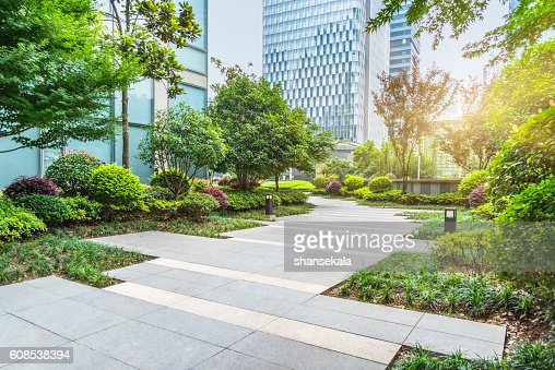 beautiful park at a sunny day : Stock Photo