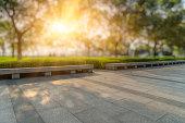 City, Public Park, Flowerbed, Ornamental Garden, Cityscape