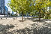 Public Park, City, Cityscape, Flowerbed, Ornamental Garden
