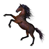 3D render of a beautiful rearing horse with a long mane and tail in a heraldic pose.
