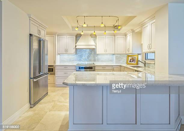Beautiful Remodeled Kitchen in a Condominium