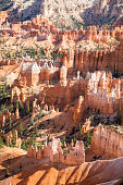 Beautiful rock formations in Bryce Canyon National park. Travel and adventure concept.