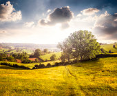 Beautiful Landscape View In Gloucestershire, Southwest Of England