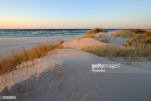 A beautiful sand dunes near the beach during sunrise