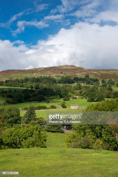Beautiful scenery in Swaledale, Yorkshire Dales, England