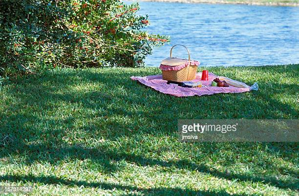 Beautiful scenery of a picnic on the grass by a lake