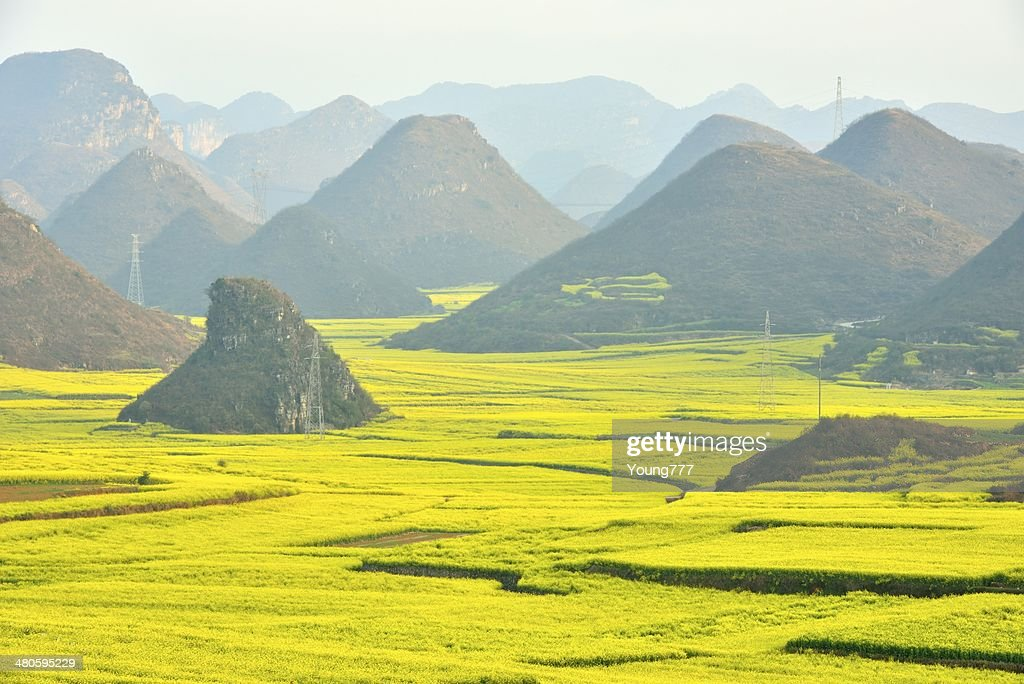 Beautiful scenery of the field, in Yunnan Province, China : Stock Photo