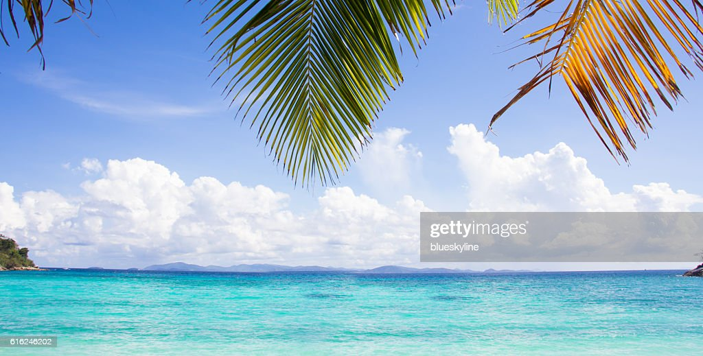 Beautiful sea : Stock Photo