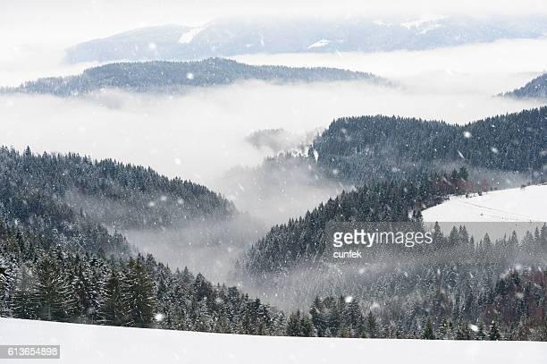Beautiful Snowy Winter Morning