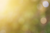 Beautiful soft blur defocused and colorful Bokeh lights in nature blur background on summer twilight  atmosphere.
