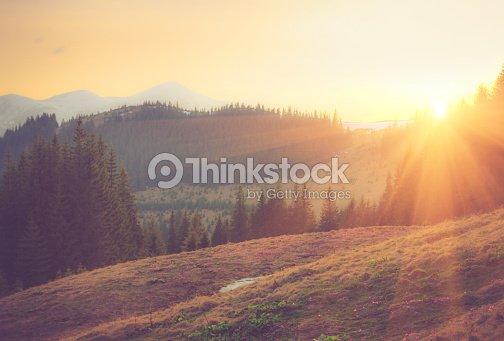 Beautiful spring mountain landscape at sunrise.