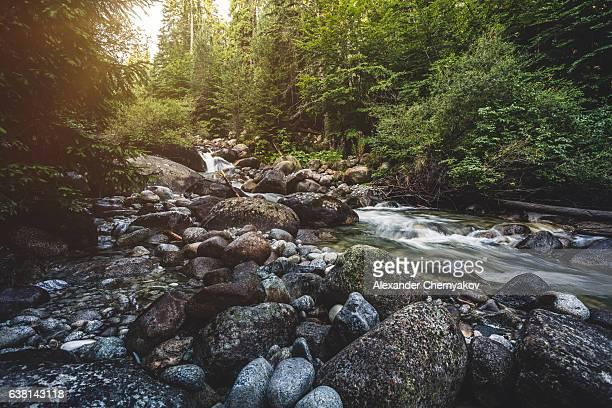 Wunderschöne stream in Bergen