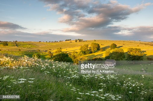 Beautiful summer landscape in Staffordshire